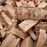 Takkapuut ja polttopuut